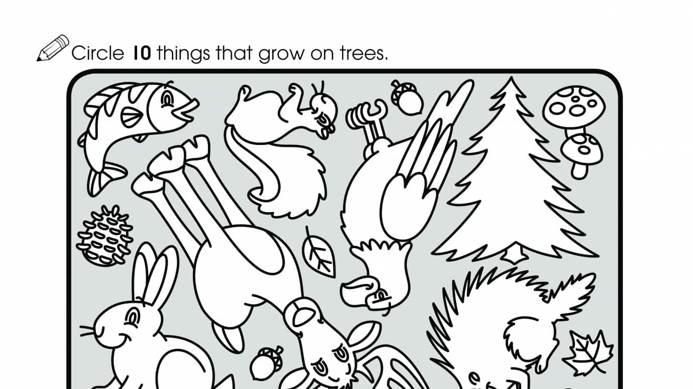 Count 10 Things that Grow on Trees