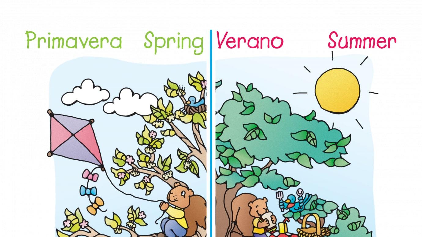 graphic relating to Seasons Printable identify Spanish English Seasons Printable Functions Any where