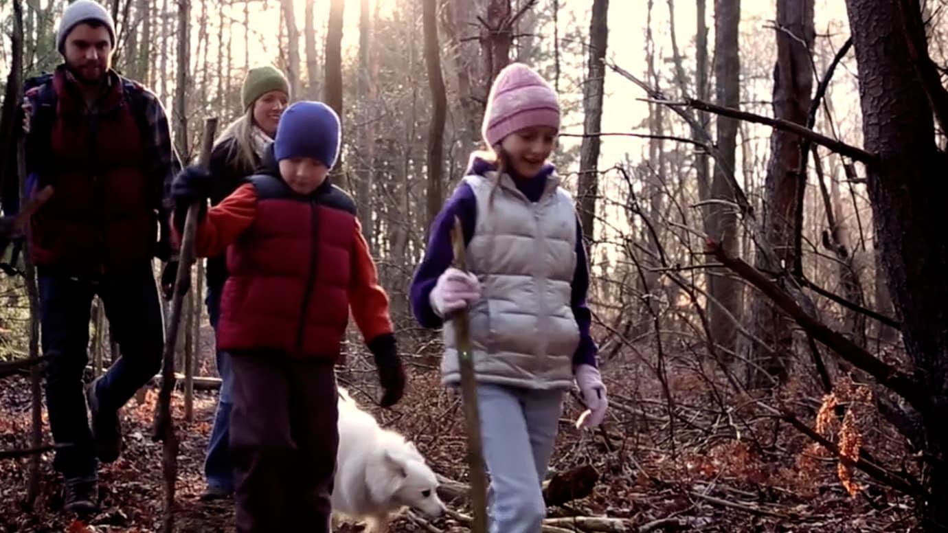 Wonderful Walk in the Woods