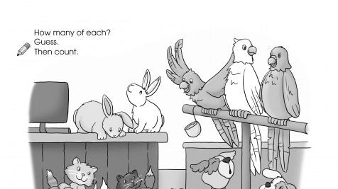 Estimating 1-5 Pet Store