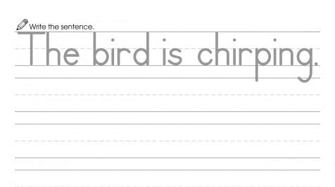 Writing a Sentence