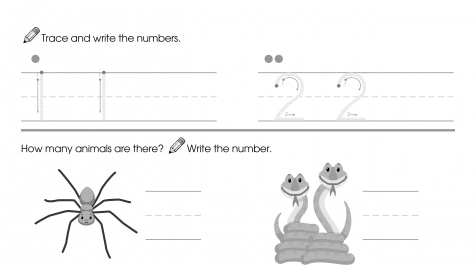 Trace & Write 1-2, Then Count & Write
