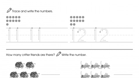 Trace & Write 11-12, Then Count & Write