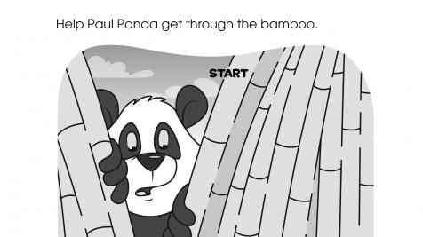 Paul Panda Maze