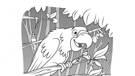 Hidden Pictures Parrots