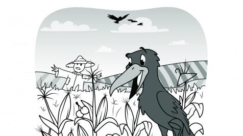 Hidden Pictures Cornfield Crows
