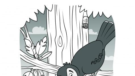 Hidden Pictures Toucan