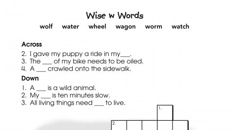 Crossword Puzzle w Words