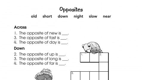 Crossword Puzzle Opposites