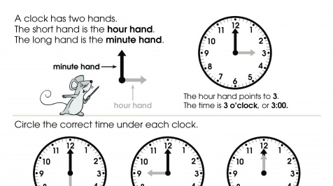 Telling Time O'clocks