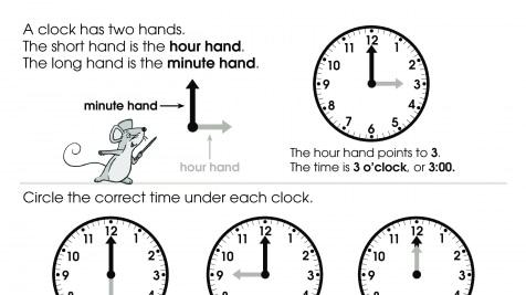 Telling Time O'clocks