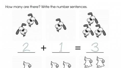 Writing Addition Problems Up to 6: Pets