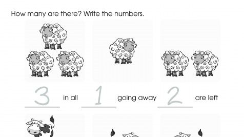 Forest Subtraction Number Sentences