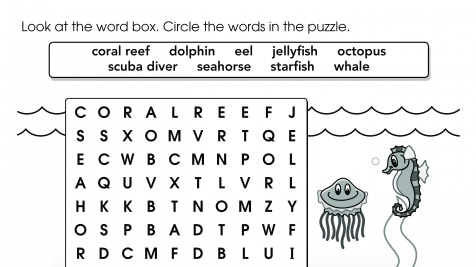 photo relating to 2nd Grade Word Search Printable named Instant Quality Term Glimpse Writables Printables Wherever