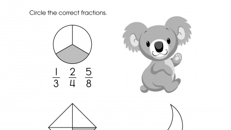 Circle the Correct Fraction