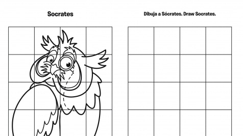 Spanish & English Draw Socrates Grid