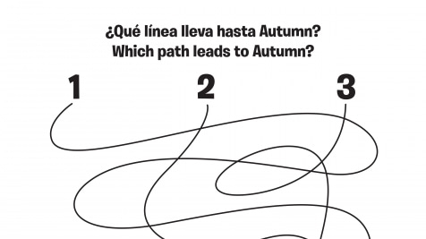 Spanish & English Autumn 1-2-3 Spaghetti Maze