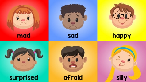 Introducing Basic Emotions