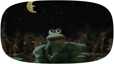 The Philosophical Frog
